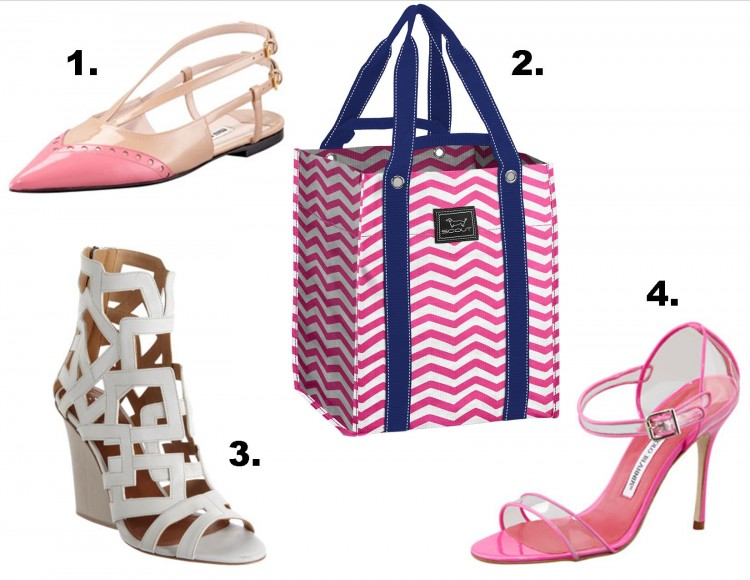 bagette for shoes pink and white