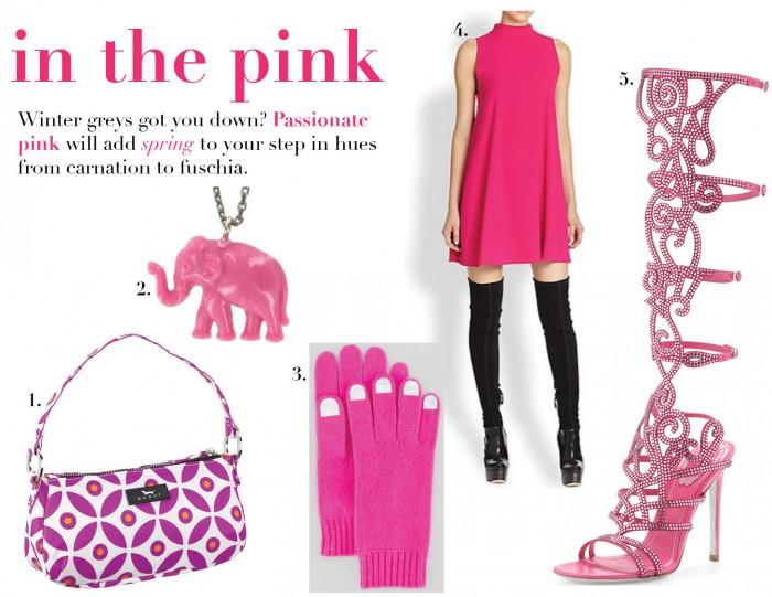 Jan 9 Pink1