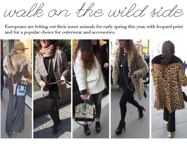 Mar 10 Leopard-Fur1