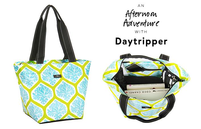 afternoon adventure daytripper